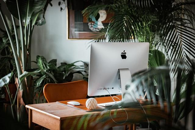 Setup bàn làm việc nhiều cây xanh và oxy